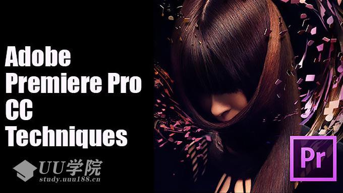 Adobe Premiere Pro CC 视频教程观看mp4
