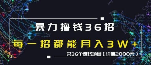 蜘蛛火暴力撸钱36招,共36个赚钱项目价值2000元