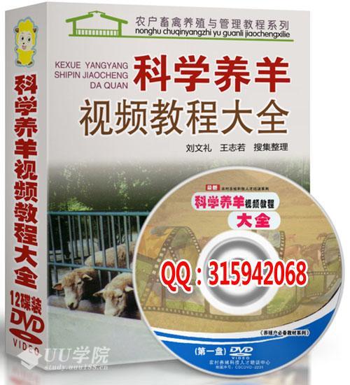 2013最新科学生态养羊技术大全光盘 山羊肉羊养殖视频教程送书籍