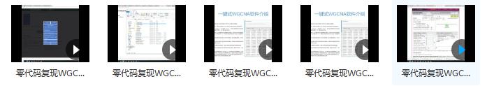 零代码复现WGCNA教程