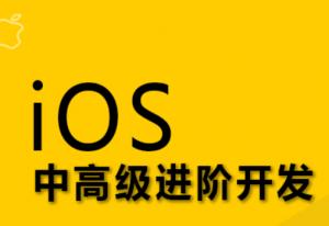Logic iOS高级强化班 [6.9G]