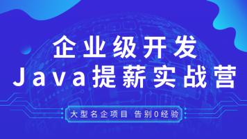 视频教程阿里美团滴滴京东一线大厂的JAVA超级实战