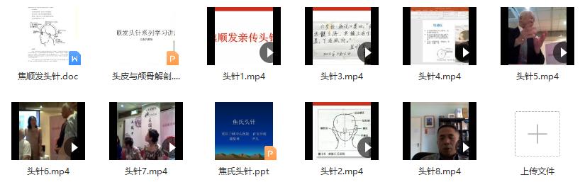 针灸:焦顺发~焦氏头针培训班高清视频14.64G含课件